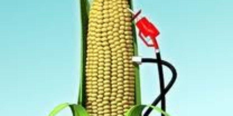 The Ethanol Truth