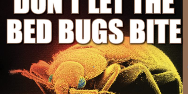 At War With Bed Bugs