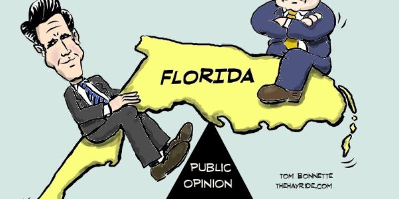 Hayride Cartoon: On The Florida Seesaw