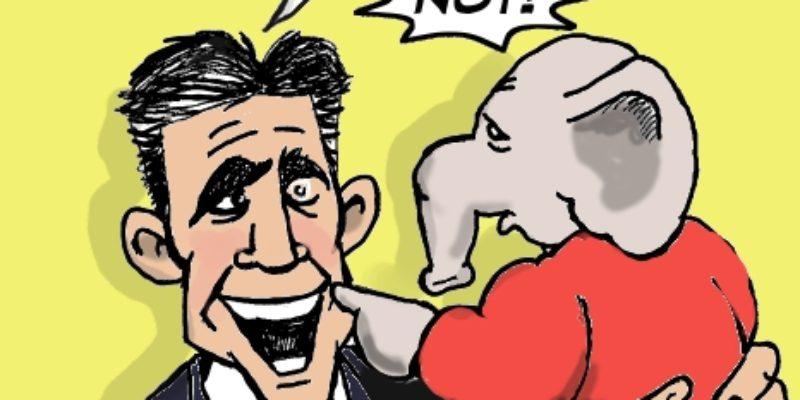 Hayride Cartoon: Go Ahead And Say Daddy's Name…