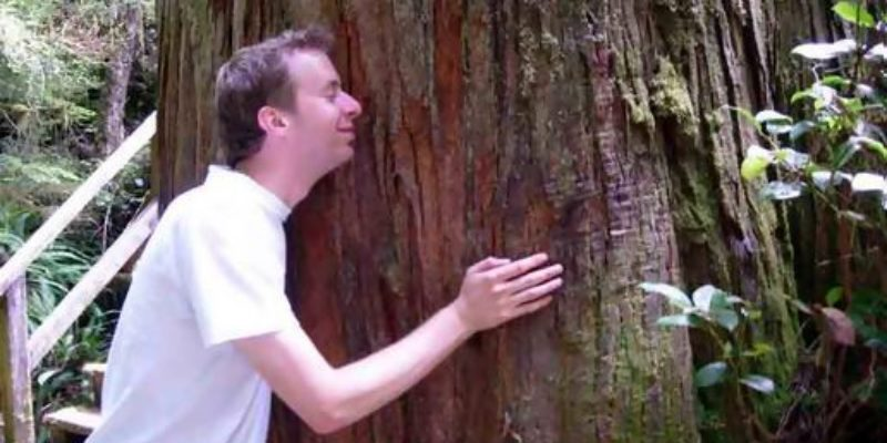 Yet Another Reason To Hate Tree Hugging Hippies—The Freon R-22 Ban