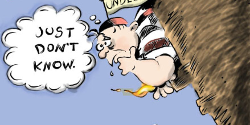 Hayride Cartoon: Haven't Made Up Your Mind…Really?