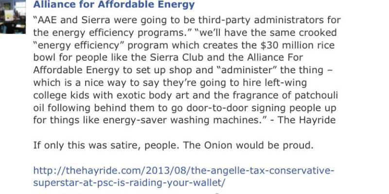 The Alliance For Affordable Energy, Who Will Get To Dig In Your Wallet…