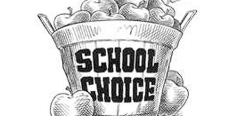 SADOW: Don't Be Surprised If The Deseg Orders Get Tossed In That Voucher Suit