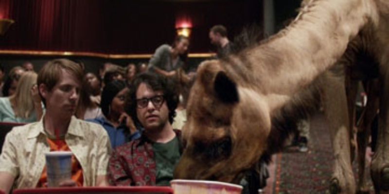 Caleb The Camel Is Back – And You'll See Him At The Picture-Show