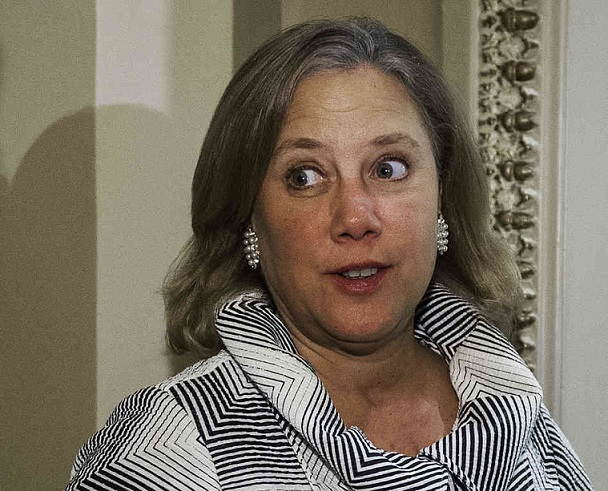 VIDEO: The Funny But True Mocking Of Mary Landrieu's Celebrity Lifestyle