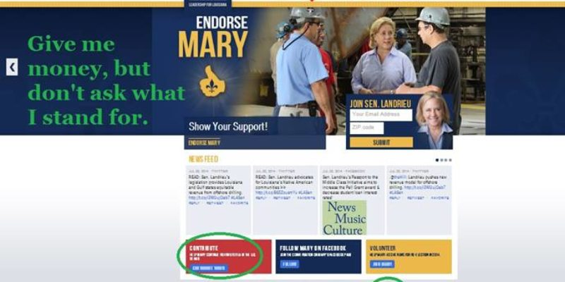 Mary Landrieu Ignores Voting Record On Re-Election Website