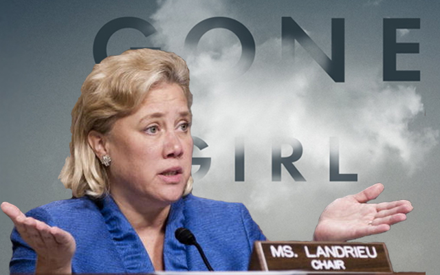 MONEY CAN'T BUY ELECTIONS: Mary Landrieu Raked In The Most Cash From Lobbyists Right Before Losing Senate Race
