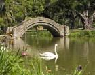 FEDERAL GOVT LOGIC: New Orleans City Park Man-Made 'Wetlands' Are Sacred