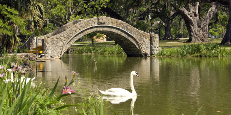 BATISTE: A Sexual Harassment Cover-Up In New Orleans' City Park