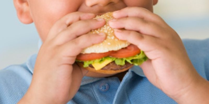 LSU Researchers Just Discovered What Causes Childhood Obesity