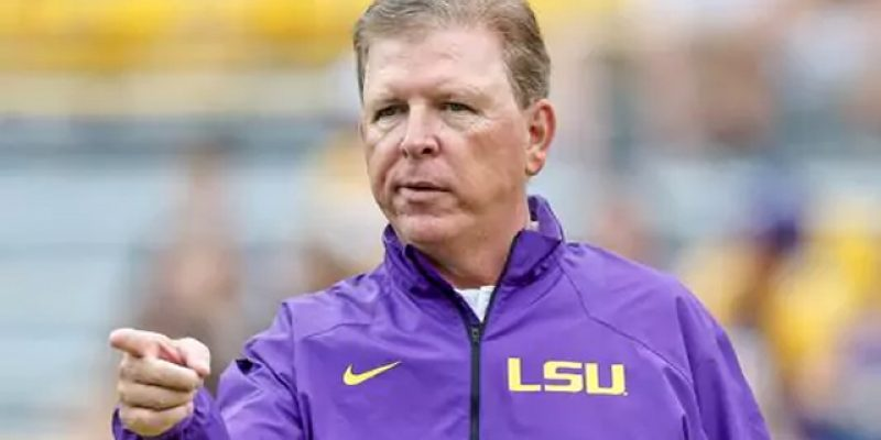 LSU Fans Lamenting The Cam Cameron Offense Have More Ammunition Courtesy Of Jason Taylor