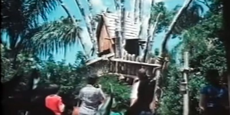 History and Images of Walt Disney's Doomed Discovery Island Park [video]