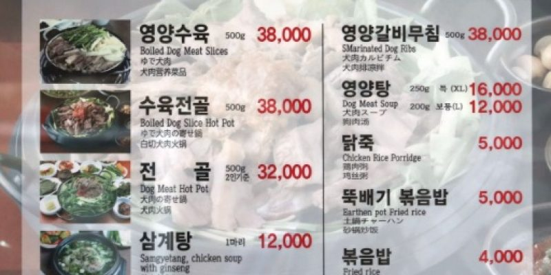 GROSS: Olympics Ignore South Koreans Eating Dog and Puppy Meat [video]