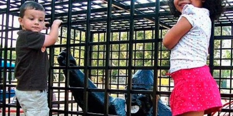 """Texas Town Removes Playground Gorilla Because of """"Racial Insensitivity"""""""