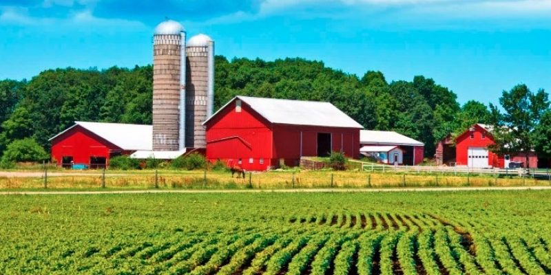 Farm Bill: Partisan divide worrying farmers; SNAP work requirement could be moot