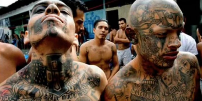 Agents Arresting MS-13 gang members, sex offenders, criminal aliens at Texas border