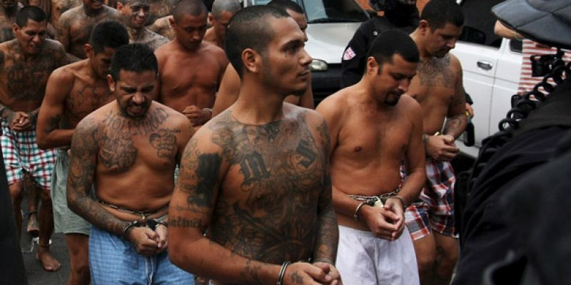 U.S. Border agents arrest MS-13 gang member in migrant caravan