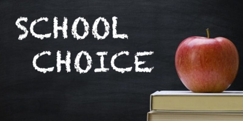 Survey: Parents overwhelmingly support school choice, distrust federal government