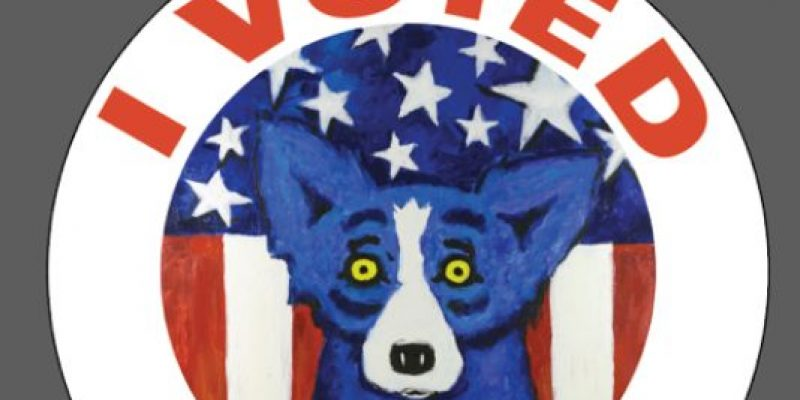 Three of seven legislative races head to run-offs after Saturday special election