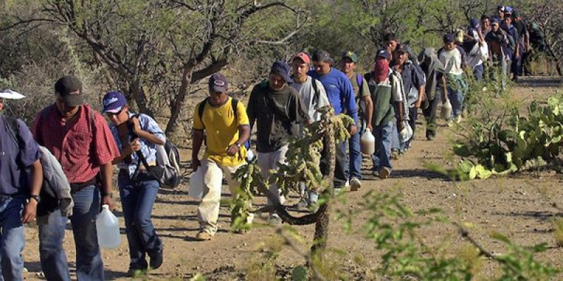 Report: Illegal immigration costs taxpayers $116 billion annually; Californians, Texans, Floridians pay the most