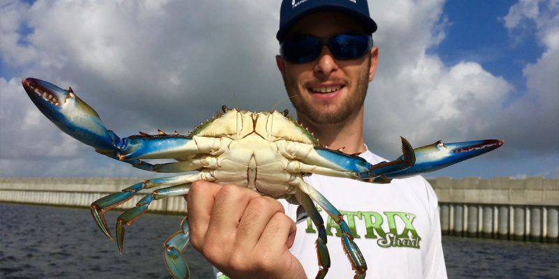 MARSH MAN MASSON: Crabbing Success — After I Threw My Son Overboard!