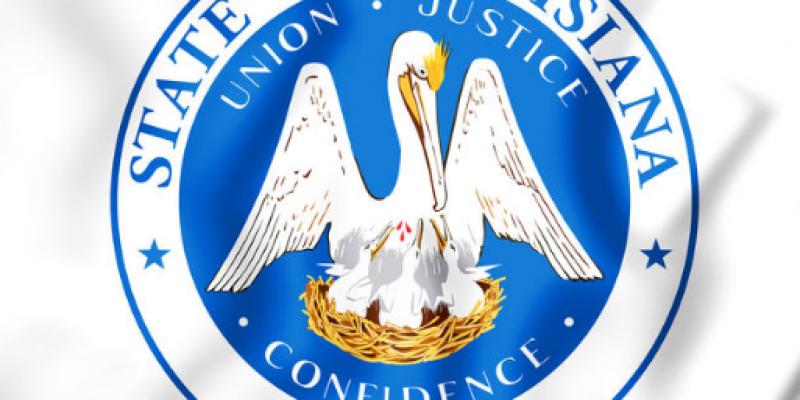 Pelican Institute launches constitutional convention forum