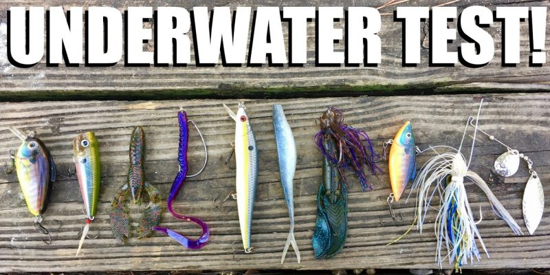 MARSH MAN MASSON: Which Lure Style Looks Best In Stained Water?