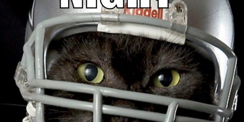Black cat wins Dallas Cowboys game Monday night [videos]