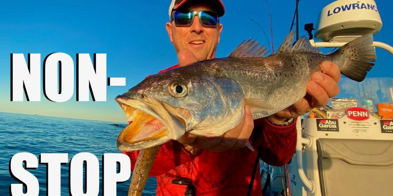 MARSH MAN MASSON: Every-Cast Action On REALLY Nice Speckled Trout!