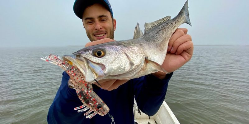 MARSH MAN MASSON: Speckled Trout Want ONLY This One Lure