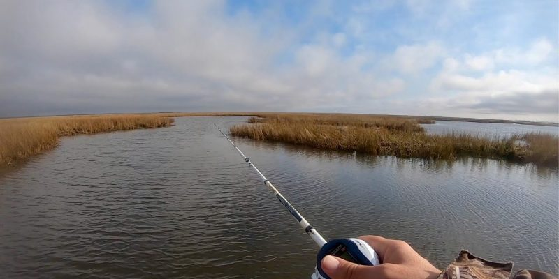 MARSH MAN MASSON: These 3 Lures All You Need To WHACK The Fish Right Now!