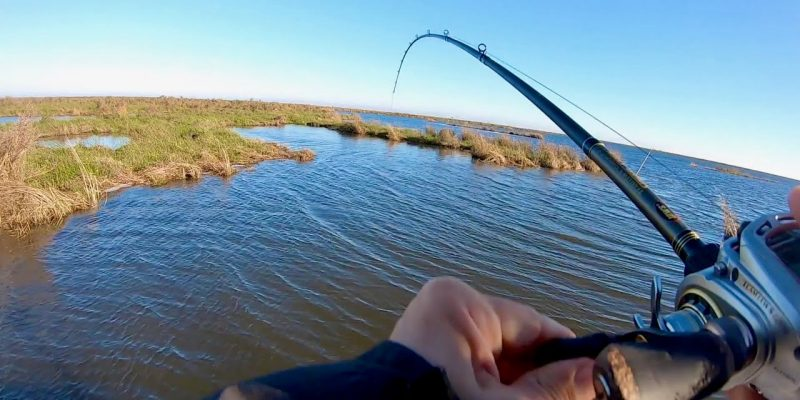 MARSH MAN MASSON: Watch Fish CLOBBER This Crazy New Lure!