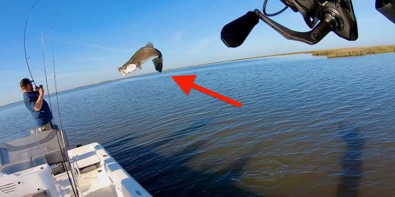 MARSH MAN MASSON: Speckled Trout FLYING Into The Boat!