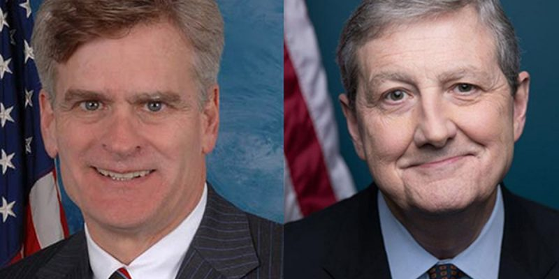 SADOW: There's A Moral Hazard Problem With Cassidy's And Kennedy's Bailout Bills