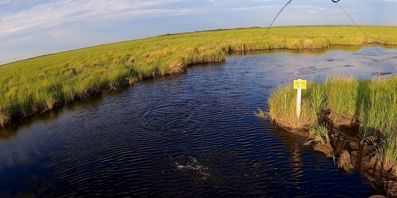 MARSH MAN MASSON: Game-Changer For Shallow-Water Fishing!