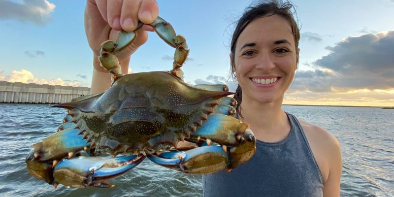 MARSH MAN MASSON: Hitting The Crab Jackpot!