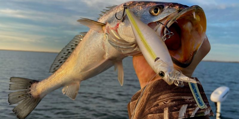 MARSH MAN MASSON: First Time Fishing This Lure WON'T Be The Last