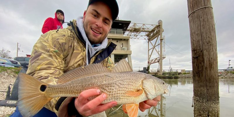 MARSH MAN MASSON: Catching REDFISH From A Public Road