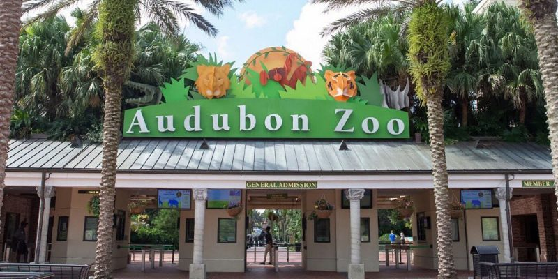 BAYHAM: The Audubon Zoo Feeds The Police To The Lions