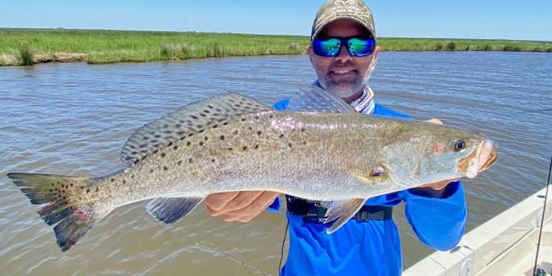 MARSH MAN MASSON: Plenty Speckled Trout CLOSE To River Water!