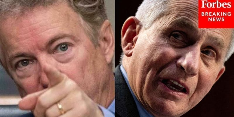 Let's Talk About What Happened Between Rand Paul And Anthony Fauci Yesterday