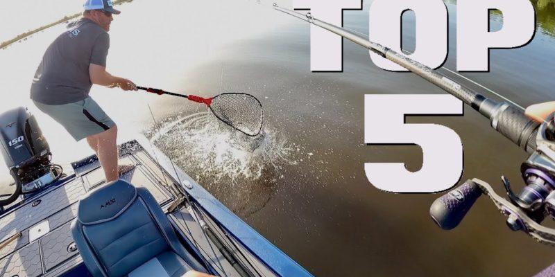 MARSH MAN MASSON: Five Lures BLASTING Fish Right Now!
