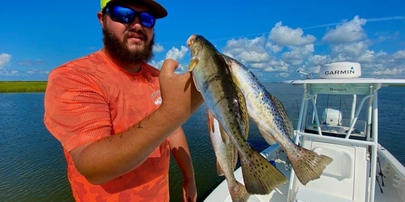MARSH MAN MASSON: Not Big Speckled Trout, But LOTS Of Them!