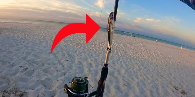 MARSH MAN MASSON: What Can I Catch In The Surf With This New Bait?