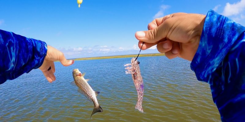 MARSH MAN MASSON: Rigging THIS WAY Upped Our Speckled Trout Action!